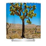Joshua Tree 28 Shower Curtain