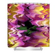 Jowey Gipsy Abstract Shower Curtain
