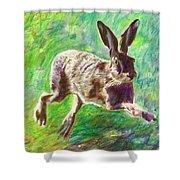 Joyful Hare Shower Curtain