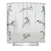 Jump With Joy Shower Curtain