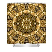Kaleidoscope 45 Shower Curtain