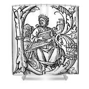 King David (d Shower Curtain