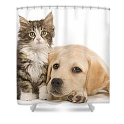 Labrador And Forest Cat Shower Curtain
