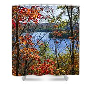 Lake And Fall Forest Shower Curtain