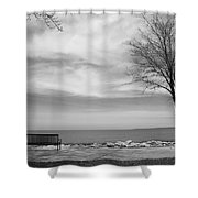 Lake Tree And Park Bench Shower Curtain