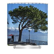 Lakeside With Trees Shower Curtain