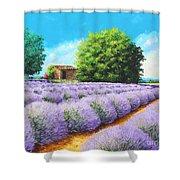 Lavender Lines Shower Curtain