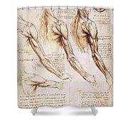 Leonardo: Anatomy, 1510 Shower Curtain