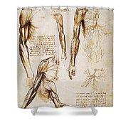 Leonardo: Anatomy, C1510 Shower Curtain