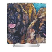 Leonberger Pair Shower Curtain