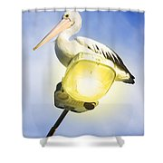 Light Pelican Shower Curtain