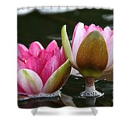 Lily Sisters Shower Curtain
