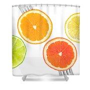Lime Lemon Orange And Grapefruit Citrus Fruit Shower Curtain