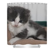 Little  Scarlow Shower Curtain