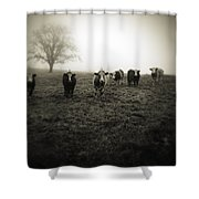 Livestock Shower Curtain