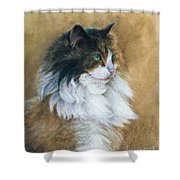 Longhaired Shower Curtain