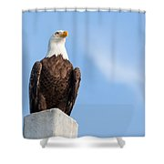 Lord Of The Realm Shower Curtain