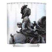 Louis Xiv Shower Curtain