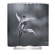 Lover's Dance Shower Curtain