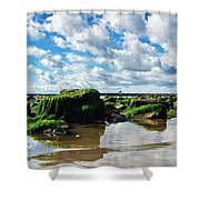 Low Tide At Lyme Regis Shower Curtain
