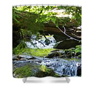 Lower Granite Falls 1 Shower Curtain