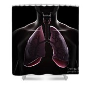Lung Anatomy Shower Curtain