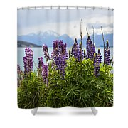 Lupin Blooms Shower Curtain