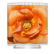 Macro Image Of A Rose Shower Curtain