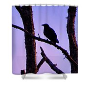 Magic Is The Night Shower Curtain