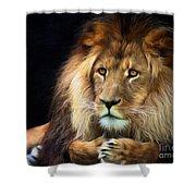 Magnificent Lion Shower Curtain