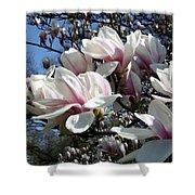 Magnolia  Twig Shower Curtain