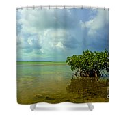 Mangrove Shower Curtain