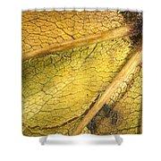 Maple Leaf Detail Shower Curtain