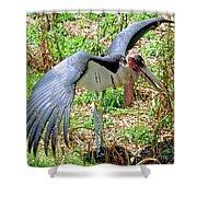 Marabou Stork Shower Curtain