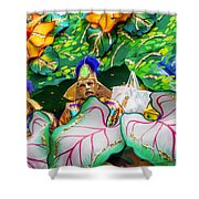 Mardi Gras Float Shower Curtain