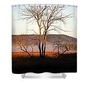 Marsh Tree Reflections Shower Curtain
