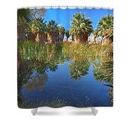 Mccallum Pond - Coachella Valley  Shower Curtain