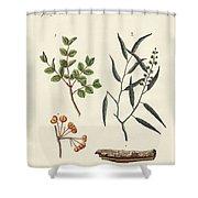 Medicinal Plants Shower Curtain