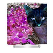 Meow 2 Shower Curtain