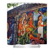 Mexican Wall Art Shower Curtain