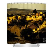 Mineral De Pozos Shower Curtain