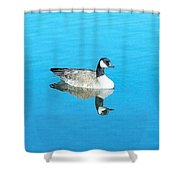 Mirror Goose Shower Curtain