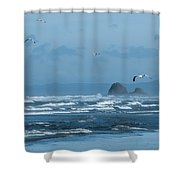 Misty Copalis Rock And Gulls Shower Curtain