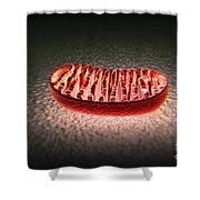 Mitochondria Cut Shower Curtain