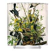 Mocking Birds And Rattlesnake Shower Curtain