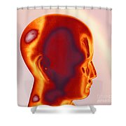Model Of A Human Head In Profile Shower Curtain