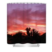Mohave Color Shower Curtain