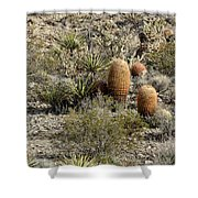 Mojave Desert Cactus Shower Curtain