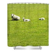 Mom And Kids Shower Curtain