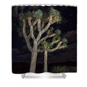 Moon Over Joshua - Joshua Tree National Park In California Shower Curtain